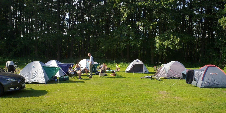 Zelte stehen auf einem grünen Rasen, der zu einem Campingplatz gehört.