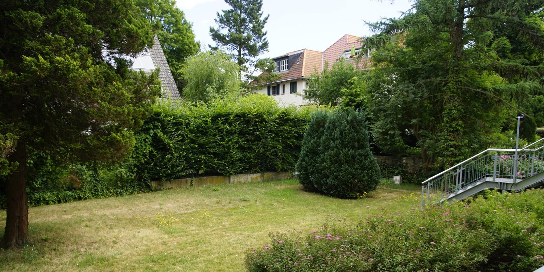 Ein grüner Garten mit einer Hecke
