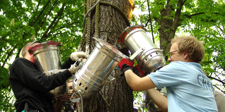 Scheinwerfer am Baum