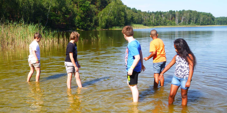 Mehrere Kidner stehen mit den Füßen in einem See
