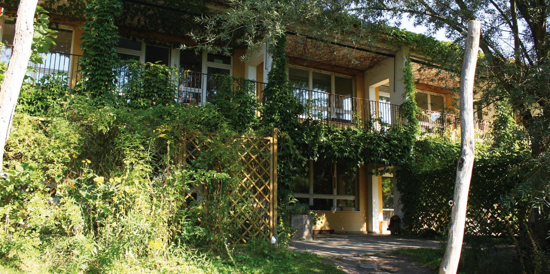 Hausfassade der Kita, überall Pflanzen
