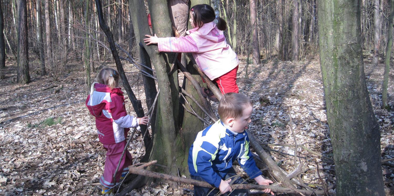 Drei Kinder die an einem Baum mit Ästen spielen und auf den Baum klettern.