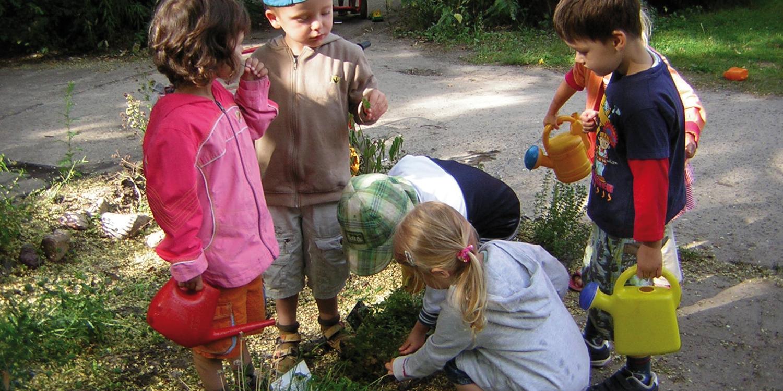 Mehrere Kinder haben Gießkannen in der Hand und wollen Pflanzen gießen