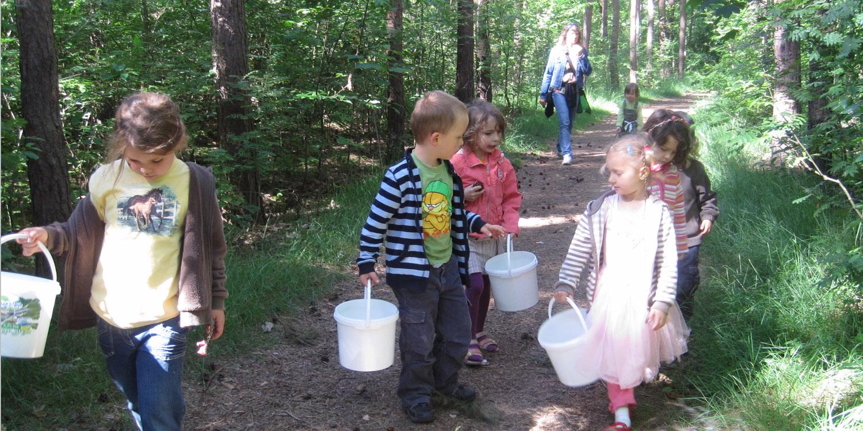 Eine kleine Gruppe Kindern mit Eimern gehen mit einer Erzieherin durch einen Wald