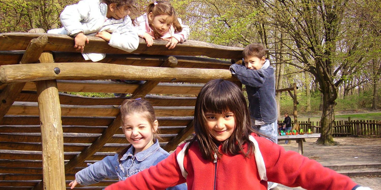 Fünf Kinder auf einem Holzklettergerüst.  sind.