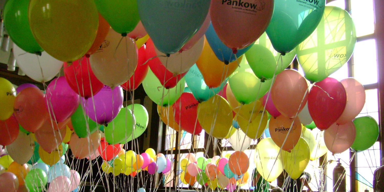 """Viele Luftballons mit der Aufschrift """"Pankow"""""""